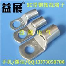 廠價直銷SC35-12鍍錫銅鼻子,35-10窺口線鼻子供應商