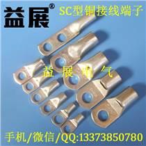 【SC50-12鍍錫銅鼻子】銅接線鼻子,窺口線鼻子專業訂做