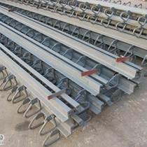 力豐GQF-Z80型橋梁伸縮縫供應行業領先