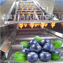 伊春藍莓氣泡清洗機 果蔬清洗機廠家直銷 信譽保證