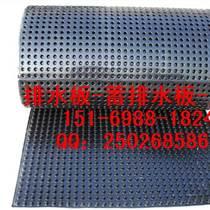 菏澤車庫綠化濾水板2公分車庫頂板排水板