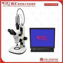 DZQ寶石視頻顯微鏡