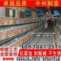 层叠蛋鸡笼 阶梯式小鸡笼 自动送料机 捡蛋机 中州鸡笼厂