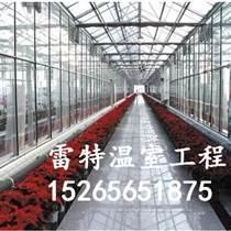 專業生產陽光蔬菜大棚 陽光溫室 質量好價格低