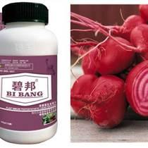進口葉面肥|碧邦葉面肥代理|甜菜葉面肥主要特點