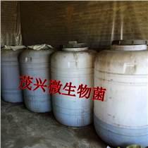 微生物菌肥批發
