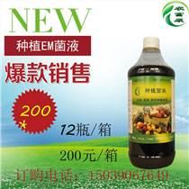 哪能買到苜蓿芽苗菜種植em益生菌栽培液
