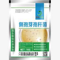 側孢芽孢桿菌微元生物添加劑畜禽養殖飼料添加劑