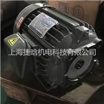 供应C15-43B0油泵专用马达