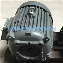 供應C01-63B0內軸式油泵電機