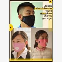 瑞利特 石墨烯活性炭PM2.5防雾霾防尘口罩复合滤片透气品牌口罩