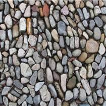 阜阳鹏程承托鹅卵石滤料供应  装饰建材可用