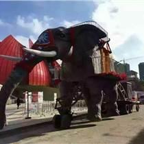 合肥機械大象租賃供應哪家好