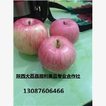 陜西膜袋紅富士蘋果價格0.7元