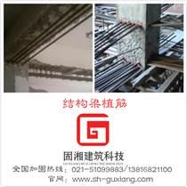 植筋加固公司 種植螺桿錨栓施工價格