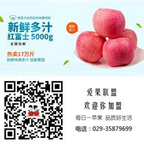 陕西红富士苹果精品手提礼盒9个精装