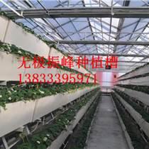 壁掛式無土栽培種植槽