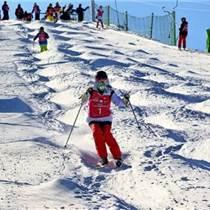旱地滑雪厂家,渭南旱地滑雪,乐之星器材(多图)