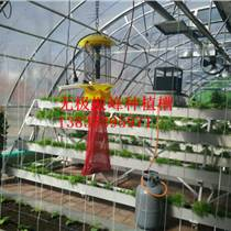壁掛式大棚草莓種植槽