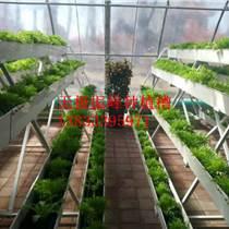 杭州瓜果蔬菜立体式种植槽