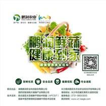 原生態蔬菜禮品卡,長沙高檔蔬菜配送首選鵬潤鮮蔬