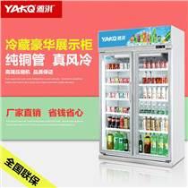 雅淇饮料展示柜 冷藏保鲜柜