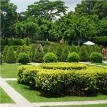 供甘肃园林景观设计和兰州园林绿化哪家好
