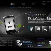朱仙庄网站建设,网站建设,弄潮儿科技(图)