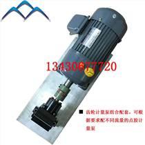 深圳高品質齒輪計量泵加電機組合配套 可配不同計量泵