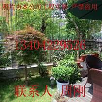 蘇州空中花園景觀工程、景觀公司