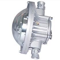 DGC35/24B(A)矿用隔爆型投光照明灯