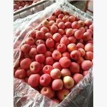 紅富士蘋果膜袋紙夾膜冷庫蘋果價格