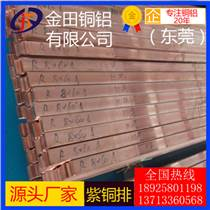 T2紫銅排 t1紫銅扁條 進口紫銅排C1100