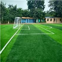 足球場人造草坪,運動場人工草坪,雙面帶筋人造草皮