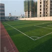 高檔足球場人造草坪,【鉆石型】運動人工草坪,耐磨耐用PE假草坪