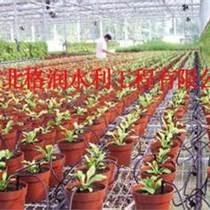 滴箭價格河南花卉滴灌現場指導安裝