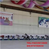 仿真冰溜冰場|人造仿真冰溜冰場投資多少錢