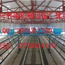 金兴 直 销各种镀锌鸡笼及养鸡设备