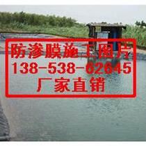 寶雞泥鰍養殖防滲膜抗老化~銅川水池防滲膜/畝產量