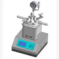 供应实验室微型高压反应釜