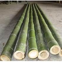 北京竹籬笆定做竹竿出售
