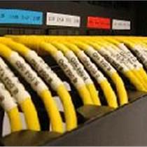 泉涌網絡搬遷公司 提供網絡搬遷 電話線網線布設