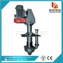 供應離心泵礦用立式潛水式渣漿泵