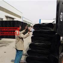 朔州屋顶绿化排水板地下室滤水板价格