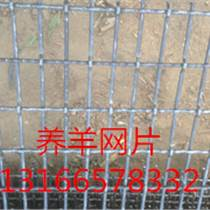 供應廠家直銷孔徑2070mm養羊鐵絲網