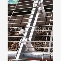 鍍鋅苗床網/移動苗床網/苗床價格