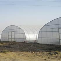 太陽能加熱溫室大棚/農創溫室