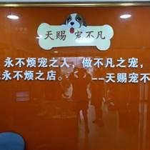 宠物美容培训|天赐宠物培训|上海宠物美容培训学校