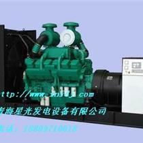 西寧星光供應康明斯柴油發動機組