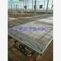 潮汐苗床 溫室苗床  移動苗床專業生產廠家